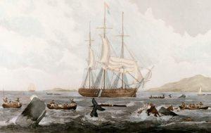 katastrofa-statku-wielorybniczego-essex-1820