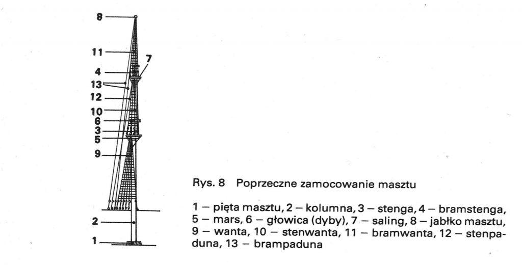 rys-8