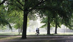jogging-4211946_640